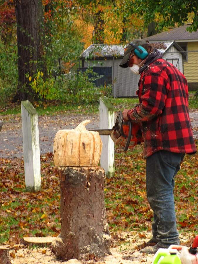 tree stump chainsaw carving