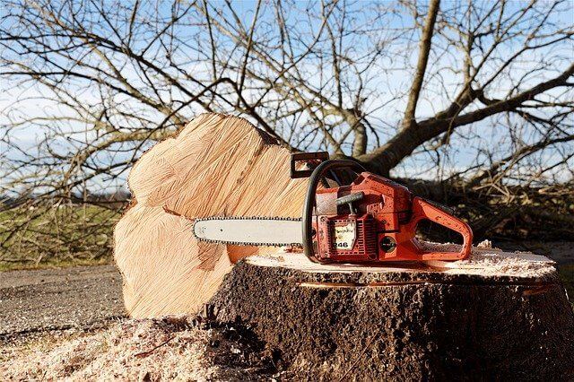 chainsaw parts and functions
