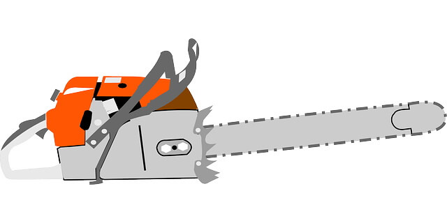 Early Life of Chainsaw